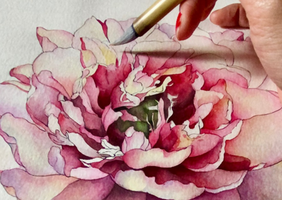 Botanical Art - Between the Aesthetic and the Functional