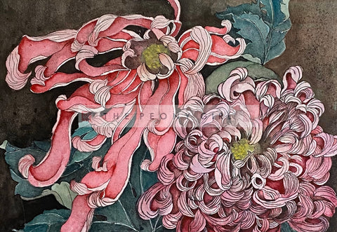 Golden Age - Chrysanthemum - The Peony Girl