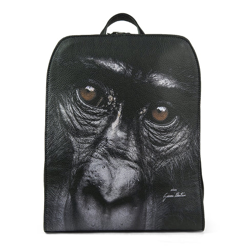 Travel Gorilla