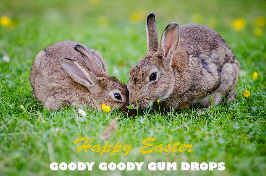 Easter Chocolates from Goody Goody Gum Drops