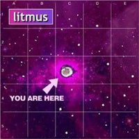 Litmus - You are here