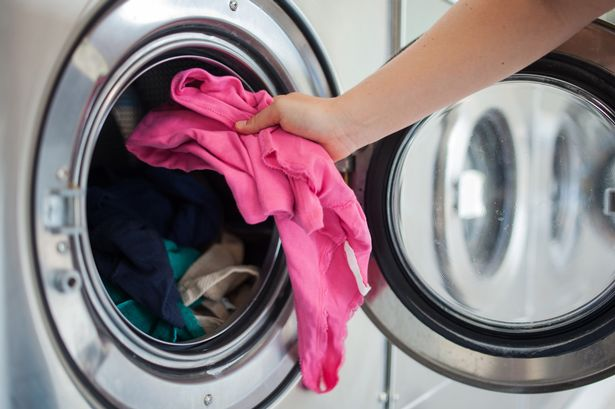 Are Bacteria & Viruses Lurking in Your Washing Machine?