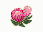 Ofelia Protea Sticker