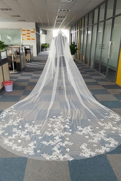 cathedral-length-appliques-tulle-ivory-wedding-veil-styles