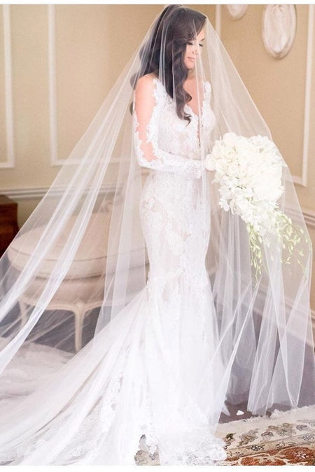 Appliqued Lace Trim Long Wedding Veil with Blusher