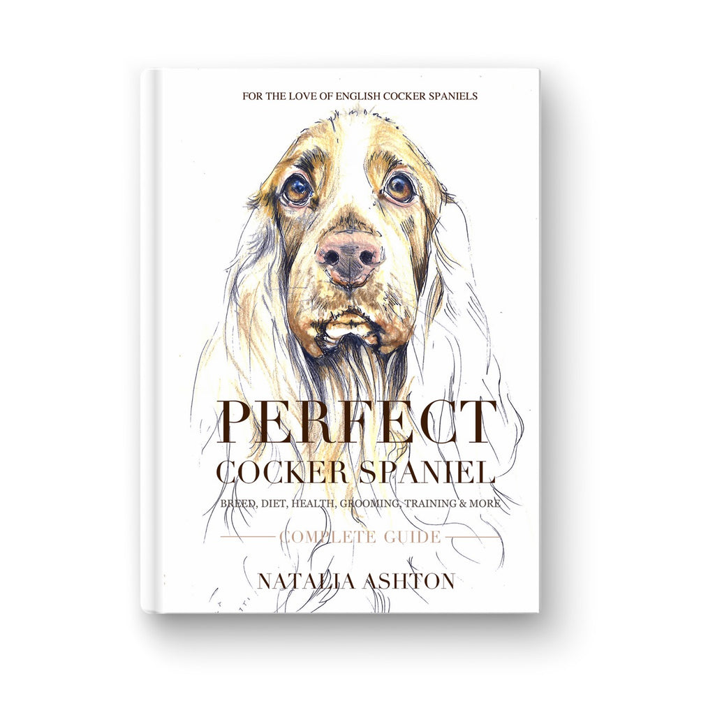 """Perfect cocker spaniel"" Paperback, Full Colour Edition - by Natalia Ashton"