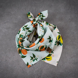 Lemonade Bandana - Puppylicious Boutique Dog Bandanas