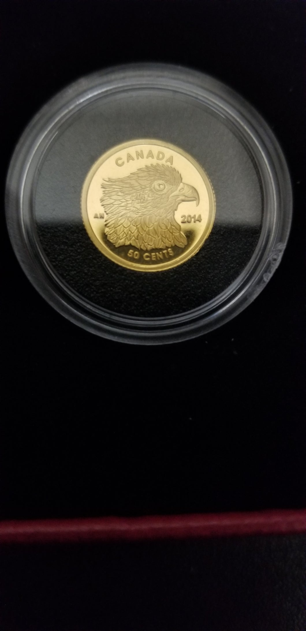 1/25 ounce of Gold