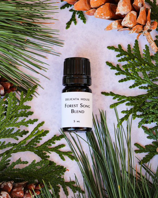 Diffuser Blends -Forest Song Aromatherapy Diffuser Blend - Woodsy Aromatherapy Diffuser Blend - Aromatherapy for Respiratory Wellness and Immune Boosting