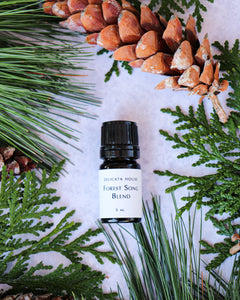 Diffuser Blend - Forest Song Aromatherapy Diffuser Blend - Woodsy Aromatherapy Diffuser Blend - Aromatherapy for Respiratory Wellness and Immune Boosting