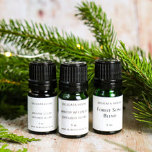 Load image into Gallery viewer, Aromatherapy Blends - Winter Sinus Health Bundle - Winter Wellness Diffuser Bundle - Diffuser Set of Three - Aromatherapy for Sinus Health - Aromatherapy Bundle