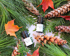 Diffuser Blends - Autumn Aromatherapy Set of Two - Autumn Wellness Blend - Forest Song Blend - Aromatherapy for Immune Strength and Respiratory Wellness