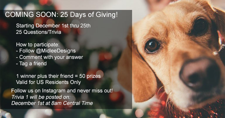 25 Days of Christmas Giveaway!!
