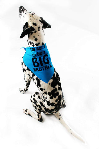 Midlee I'm Going to be a Big Brother Dog Bandana