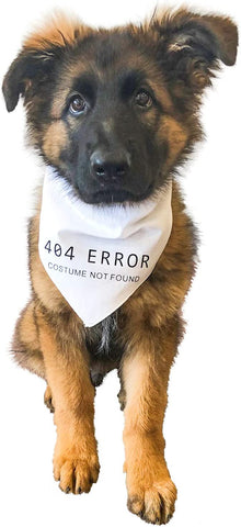 Midlee 404 Error Costume Not Found Dog Halloween Bandana