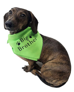 Midlee Big Brother Dog Bandana