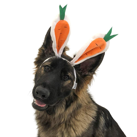 Midlee Carrot Bunny Ears Easter Dog Headband Costume