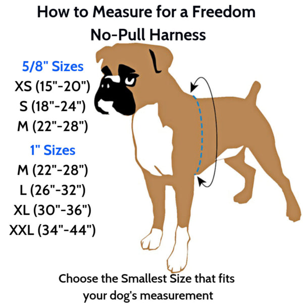 2 Hounds Design Freedom No-Pull Nylon Dog Harness Training Package with Leash, Medium, Raspberry