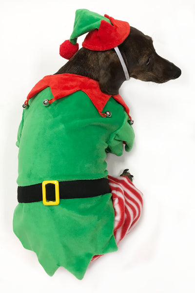 Dog Elf Costume by Midlee
