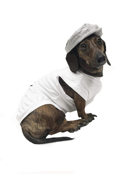Midlee Salt & Pepper Dog Costume (Salt, X-Large)