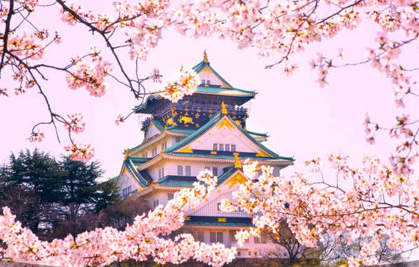 5 Misconceptions About Traveling To Japan
