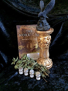 The Morrighan Kit