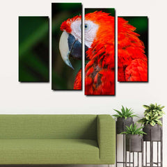Macaw Parrot 4-Piece Canvas Wall Art Set