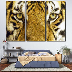 Tiger Eyes 3-Piece Canvas Wall Art Set