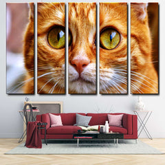 Cat 5-Piece Canvas Wall Art Set