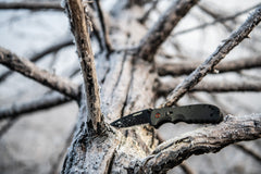 A black stainless steel blade assist folding knife sitting on a snowy tree branch in a snow covered tree.