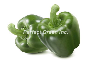 Green Pepper Large 25 lbs, Case, USA