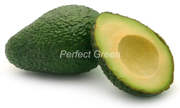 Avocado Small, Count 48, Case, Mexico