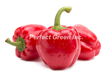Pepper Red Large 25lb, Case, Canada
