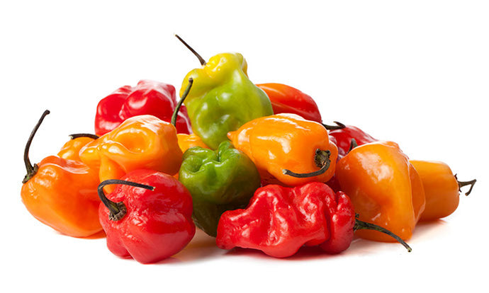Pepper Habanero Mixed Colour 8 lbs , Mexico