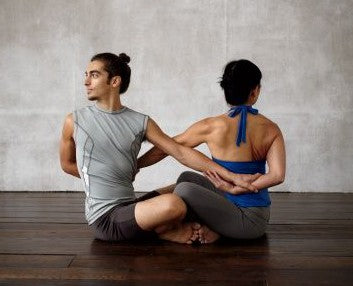 Partner Sit 'n' Twist, beginner yoga poses for two