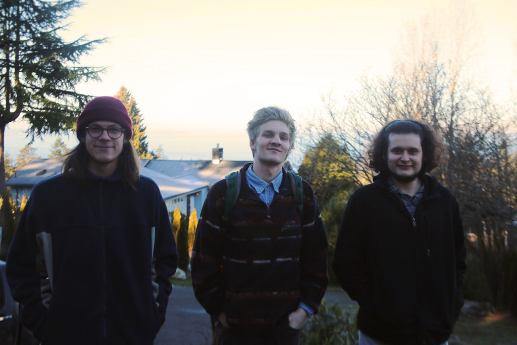 interview-with-animals-in-the-attic-the-band