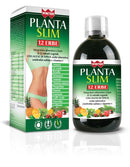 WINTER PLANTA SLIM 12 ERBE 500 ML - azfarma