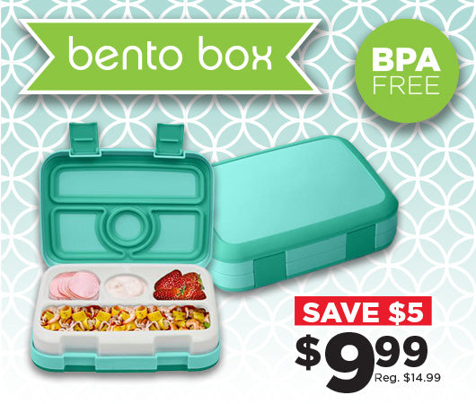 Bento Boxes are one of 2019's HOTTEST trends!
