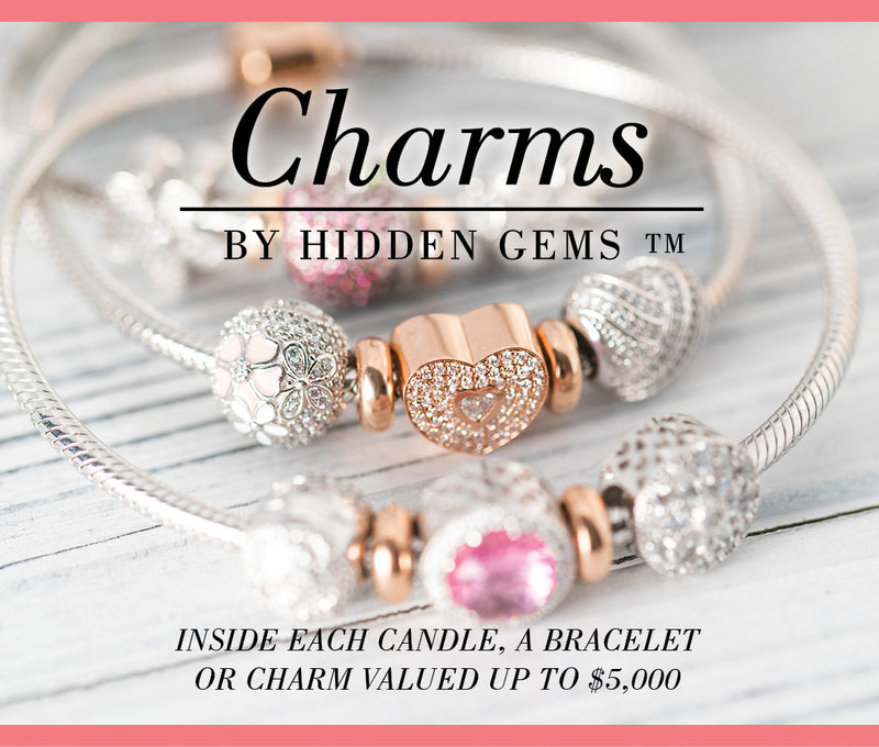Brand new Hidden Gems Charms & Bracelets
