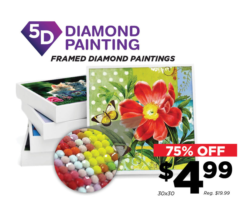 75% Off Select 5D Diamond Paintings!