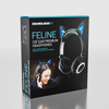SoundlogicXT Feline Cat Ear Premium Headphones