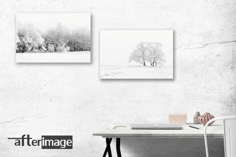 """Snowscapes"" - Landscape Printed Canvas set - afterimage.canvas"