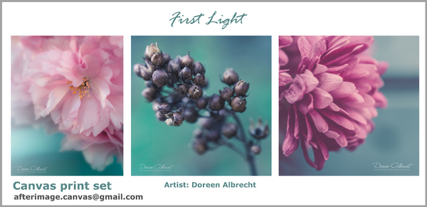 """First Light"" - Floral Printed Canvas set - afterimage.canvas"