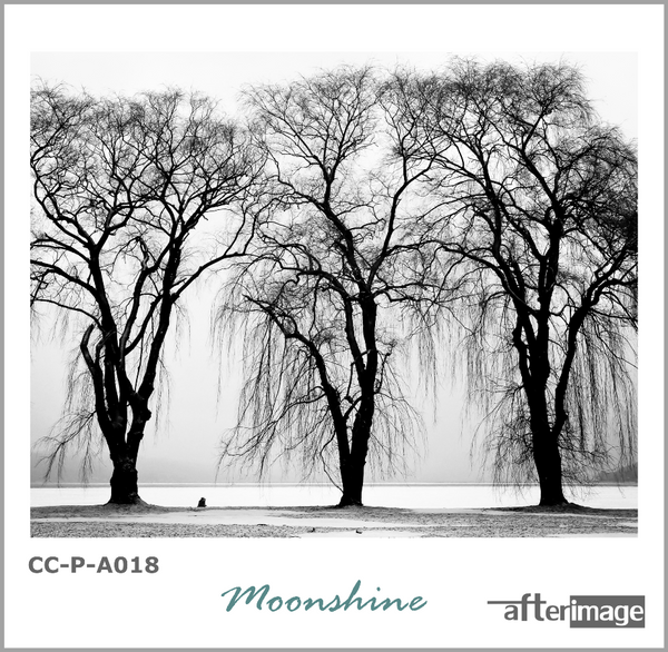 """Moonshine"" - Black and White Printed Canvas set - afterimage.canvas"