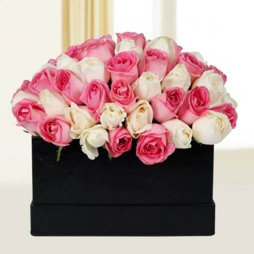 Peaceful Pink N White Roses
