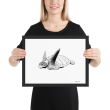 Load image into Gallery viewer, Framed Print – Sea Turtle