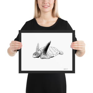 Framed Print – Sea Turtle