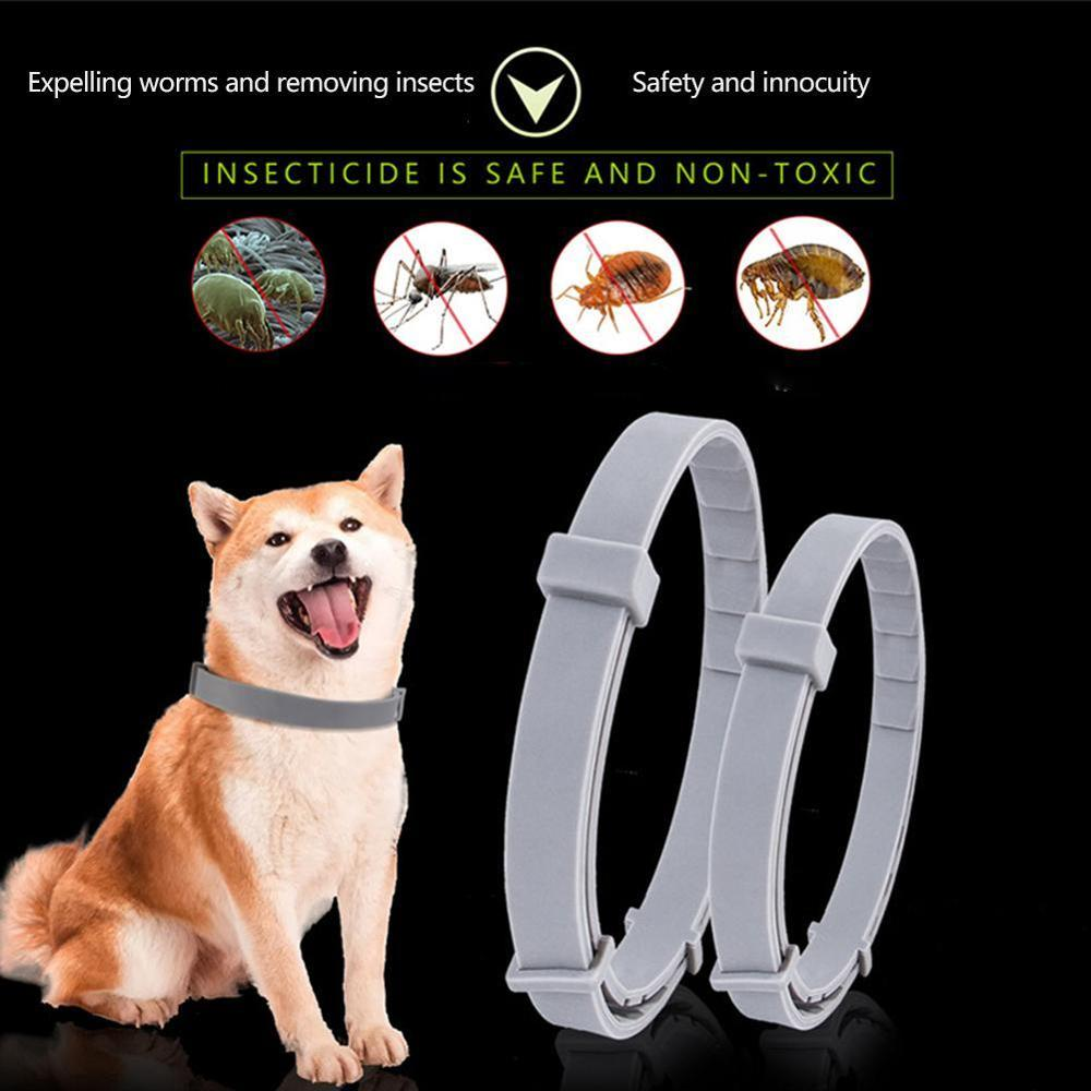 Pets Flea And Tick Collar Dogs Cats Collar Anti-mosquito Repellent