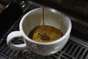Espresso Basics Workshop