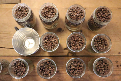 100 gram sample whole bean packs (6 per case)